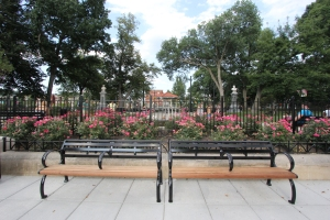 Benches_Flowers_1