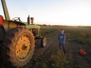 Tractor_PumpkinPatch