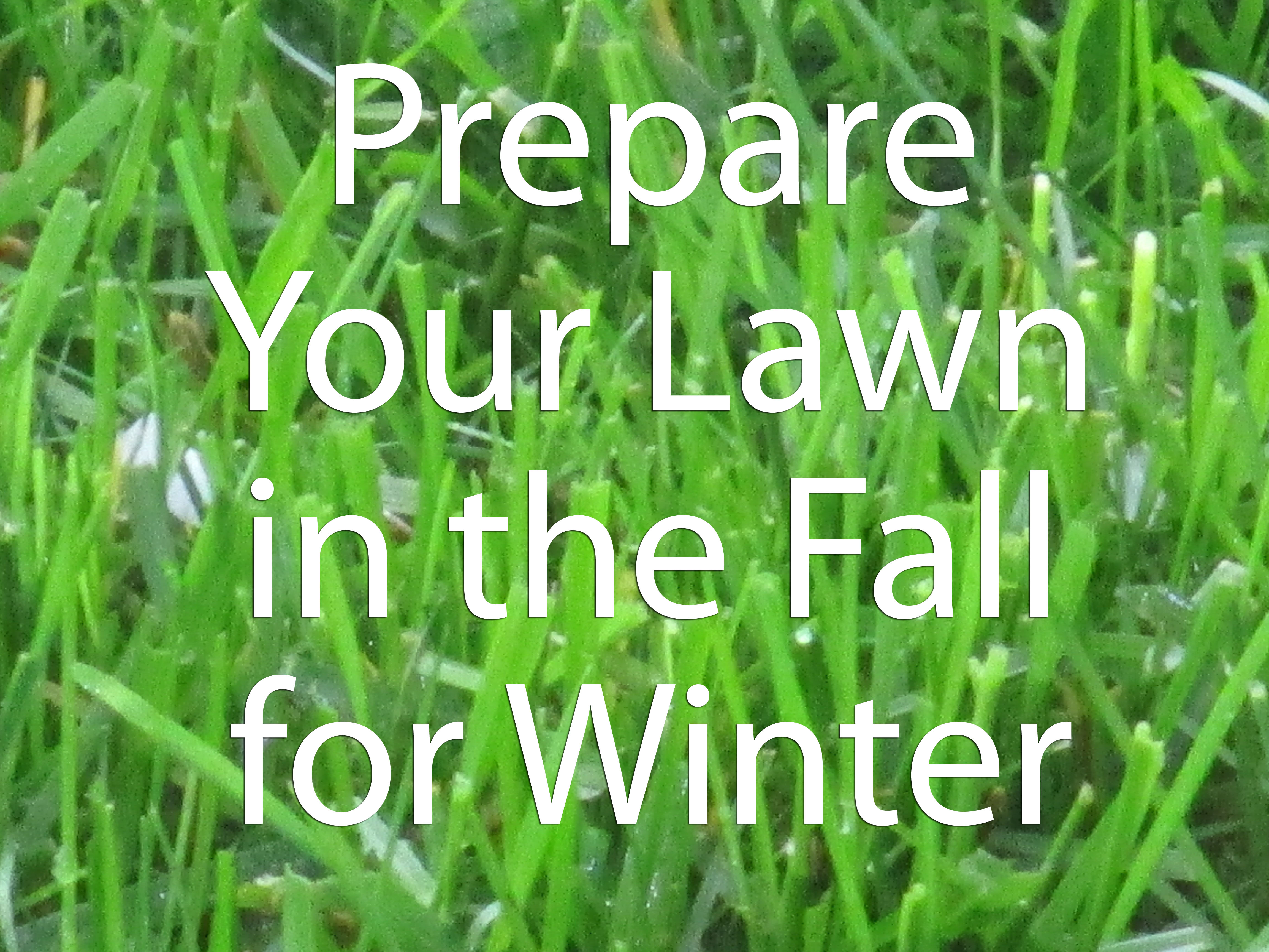 Prepare Lawn For Winter prepare your lawn in the fall for winter | sibcy cline blog