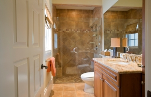 Bath_Shower_Granite