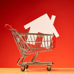House shape inside shopping cart