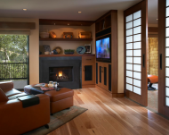http://www.houzz.com/photos/25036/Media-Room-for-busy-couple-contemporary-family-room-san-francisco