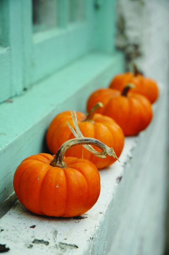 pumpkins-on-window-sill