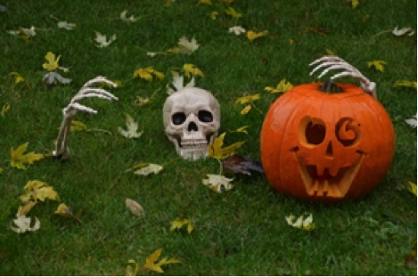 skeletonpumpkin