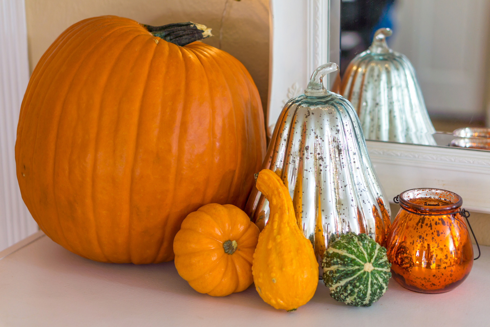 Pumpkins and Gourds with a mirror reflection