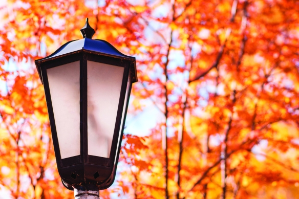 Old street lamp in the park at autumn. Toned image.